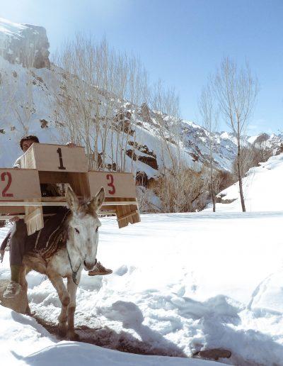 Mé(ti)ssages-Bamyan Ski Club (5)