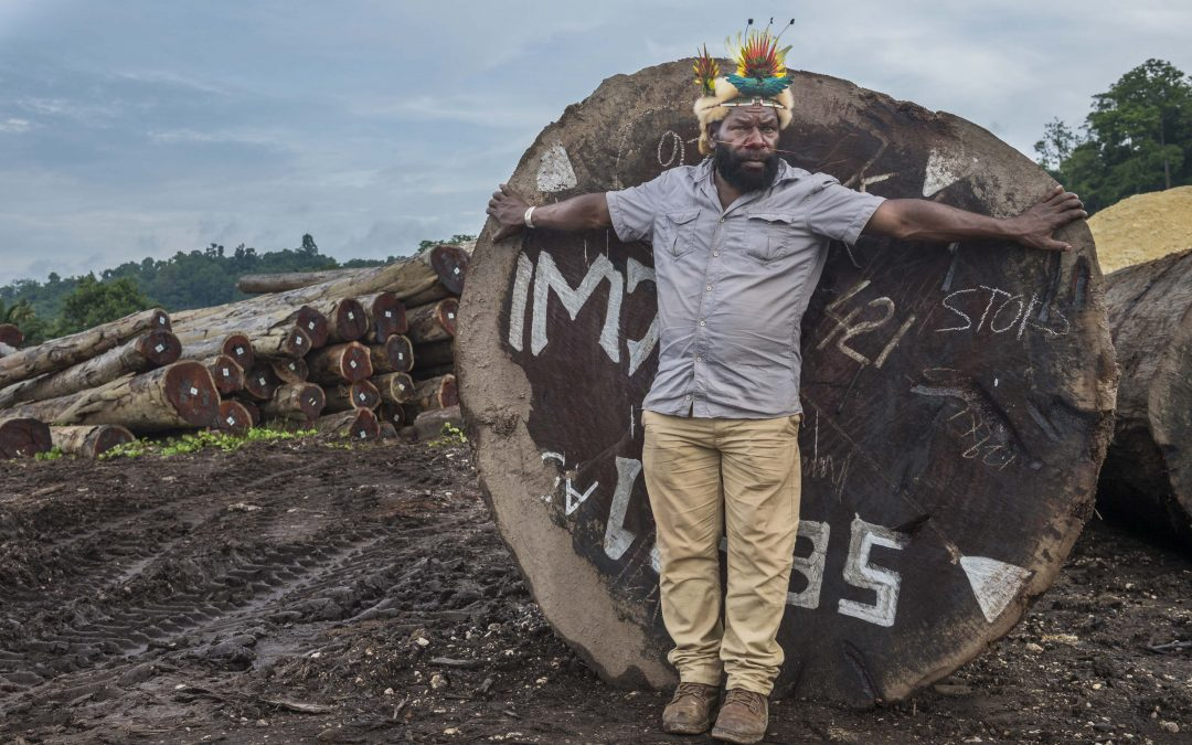 Frères des arbres : un appel à sauver les forêts primaires